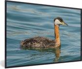 Foto in lijst - Roodhalsfuut in het knalblauwe water fotolijst zwart 60x40 cm - Poster in lijst (Wanddecoratie woonkamer / slaapkamer)