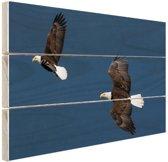 Adelaar paar Hout 60x40 cm - Foto print op Hout (Wanddecoratie)