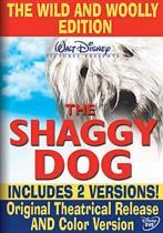 the shaggy dog (dvd)