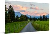 Weg door het Zwitsers landschap bij de Eiger Aluminium 90x60 cm - Foto print op Aluminium (metaal wanddecoratie)