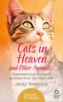 Cats in Heaven
