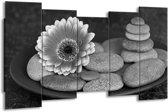 Schilderij | Canvas Schilderij Bloem, Stenen | Grijs, Zwart | 150x80cm 5Luik | Foto print op Canvas