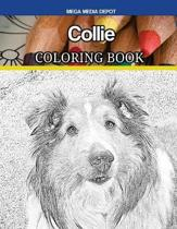 Collie Coloring Book