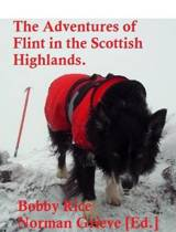 The Adventures of Flint in the Scottish Highlands.