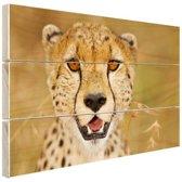 Portret jonge luipaard Hout 30x20 cm - klein - Foto print op Hout (Wanddecoratie)