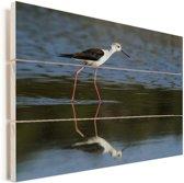 Steltkluut in ondiep water met een weerspiegeling Vurenhout met planken 40x30 cm - klein - Foto print op Hout (Wanddecoratie)