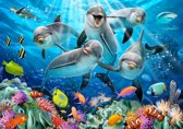 Fotobehang Dolfijnen XXL – kinderkamer – posterbehang - 368 x 254 cm