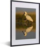 Foto in lijst - Reflectie van een lepelaar in het kalme water fotolijst zwart met witte passe-partout klein 30x40 cm - Poster in lijst (Wanddecoratie woonkamer / slaapkamer)