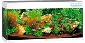 Juwel Rio 240 Led Aquarium - 121x41x50 cm - 240L - Wit