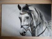 Deurmat 40x60 Paard Black&White