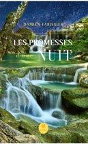 Les promesses d'une nuit
