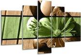 Glasschilderij Bloem | Groen, Bruin | 170x100cm 5Luik | Foto print op Glas |  F004473