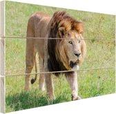 FotoCadeau.nl - Lopende leeuw Hout 60x40 cm - Foto print op Hout (Wanddecoratie)