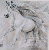 Horka Wenskaart Paard Galopperen 12,5 X 18 Cm