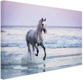 Paard op het strand Canvas 30x20 cm - Foto print op Canvas schilderij (Wanddecoratie)