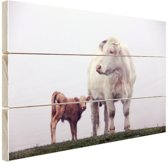Koe met kalf in de mist Hout 120x80 cm - Foto print op Hout (Wanddecoratie)