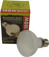 Komodo Hoeklamp - ES 100 Watt