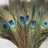 Pauwen Veren - Pauwenveren - 100 stuks - 25-30cm - Decoratie - Decoratief Beeld of Figuur