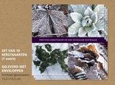 Set van 10 luxe kerstkaarten Hulst