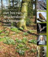 Het bos van Wijckerslooth te Oegstgeest