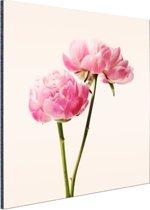 Roze Bloesem Aluminium 90x60 cm - Foto print op Aluminium (metaal wanddecoratie)