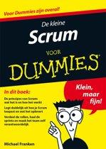 De kleine Scrum voor Dummies