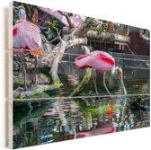 Roze lepelaar drinkt uit een vijver Vurenhout met planken 120x80 cm - Foto print op Hout (Wanddecoratie)