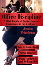 Office Discipline: A BDSM Bundle of Domination and Punishment in the Workplace