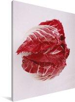 Fel rode roodlof tegen een lichte achtergrond Canvas 60x80 cm - Foto print op Canvas schilderij (Wanddecoratie woonkamer / slaapkamer)