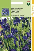 Hortitops Zaden - Lathyrus Odor. Royal Family Blauw