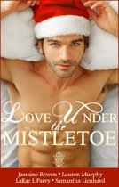 Love Under the Mistletoe