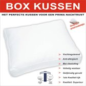 Homéé - BOX Kussen | tijk 100% katoen Perkaal | Bolletjesvezels | 50x60 /10cm