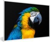 Foto in lijst - Een kleurrijke blauwkeelara kijkt opzij fotolijst wit 60x40 cm - Poster in lijst (Wanddecoratie woonkamer / slaapkamer)