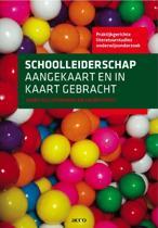 Boek cover Praktijkgerichte literatuurstudies onderwijsonderzoek 3 - Schoolleiderschap aangekaart en in kaart gebracht van Geert Kelchtermans