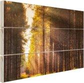 FotoCadeau.nl - Zonnestralen langs hoge bomen Hout 80x60 cm - Foto print op Hout (Wanddecoratie)