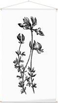 Textielposter Botanisch Rolklaver Zwart-Wit (Birds-Foot Trefoil) - 60 x 105 cm