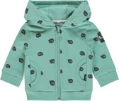 Noppies Jongens Hoody met all over print Plymouth - Sage - Maat 80