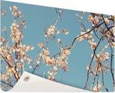 Bloesem Tuinposter 120x80 cm - Tuindoek / Buitencanvas / Schilderijen voor buiten (tuin decoratie)