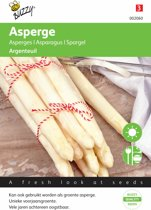 Buzzy - Asperge Argenteuil