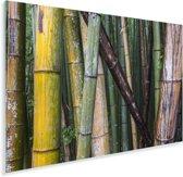 Vele soorten bamboe in het Bamboebos van Arashiyama in Japan Plexiglas 120x80 cm - Foto print op Glas (Plexiglas wanddecoratie)