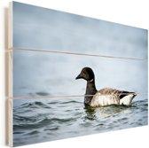 Rotgans in het water tijdens de schemering Vurenhout met planken 90x60 cm - Foto print op Hout (Wanddecoratie)
