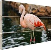 Flamingo in water voor rotsen Hout 60x40 cm - Foto print op Hout (Wanddecoratie)