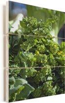 Afbeelding van groene bladmoes Vurenhout met planken 40x60 cm - Foto print op Hout (Wanddecoratie)