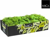 mica decorations - rendiermos mica l38b19.5h9.3 groen 500gr