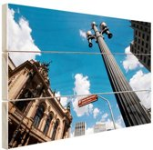 Theatro Municipal van Sao Paulo Hout 60x40 cm - Foto print op Hout (Wanddecoratie)