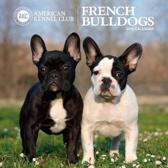 French Bulldogs American Kennel Club 2018 Wall Calendar