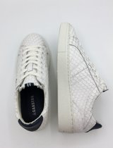 Gaastra Cat- Sneakers Dames- Maat 37