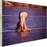 Nijlpaard gaap in het water Hout 160x120 cm - Foto print op Hout (Wanddecoratie) XXL / Groot formaat!