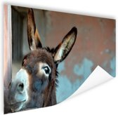 Ezel Poster 90x60 cm - Foto print op Poster (wanddecoratie woonkamer / slaapkamer) / Dieren Poster