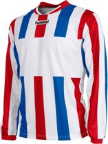 Hummel Madrid Shirt - Voetbalshirts  - wit - S
